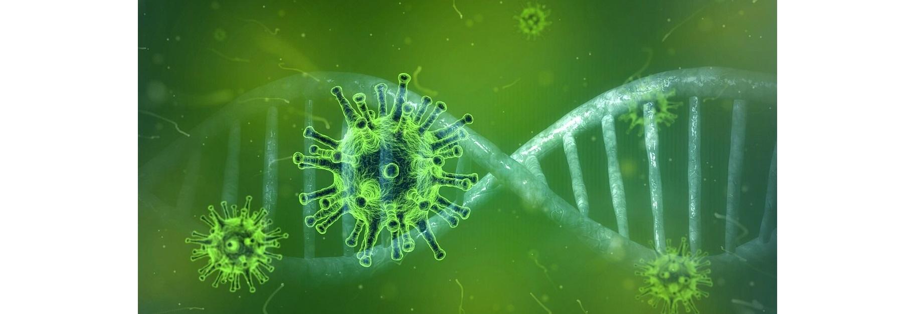 Nästan var tredje amerikan tror att Covid-19 har tagits fram i ett laboratorium